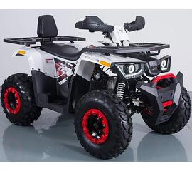 Квадроцикл Forte Braves 200 2020 года.