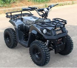 Детский электроквадроцикл J-Rider 800W (Литевая батарея, карбон)